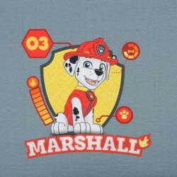 Mancsőrjárat - Marshall panel